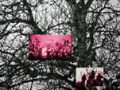 azuring // dance (detalle). fotocopias b/n, fotografías. 244 x 300 cm. 2011
