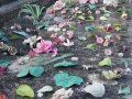 las flores que algunos muertos no quisieron. fotografia. 40 x 30 cm. 2008
